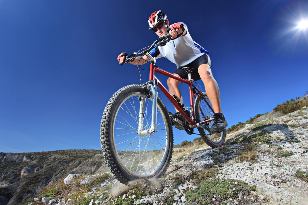 Experience Mountain Biking in Shelton